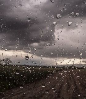 Laufen im Regen stärkt die Abwehrkräfte