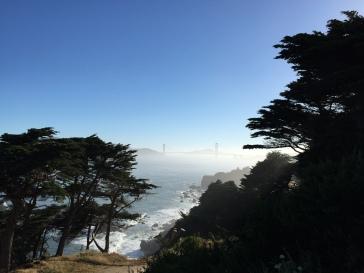 Laufen im Golden Gate Park in San Francisco 2017