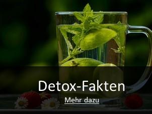 Detox LP_Detox Fakten